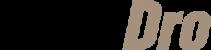 LogoCashDro-weiss-gold-300x71